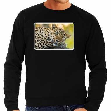 Dieren trui / trui jaguars foto zwart heren
