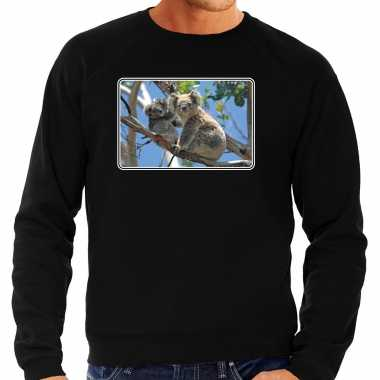 Dieren trui / trui koalaberen foto zwart heren