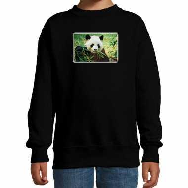 Dieren trui / trui pandaberen foto zwart kinderen