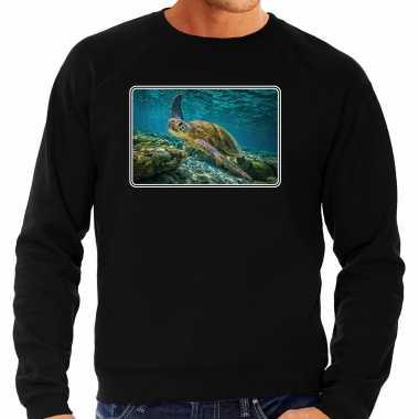 Dieren trui / trui schildpadden foto zwart heren
