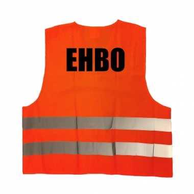 Ehbo truije / hesje oranje reflecterende strepen volwassenen
