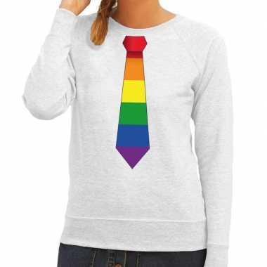 Gay pride regenboog stropdas trui grijs dames
