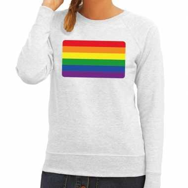 Gay pride regenboog vlag trui grijs dames