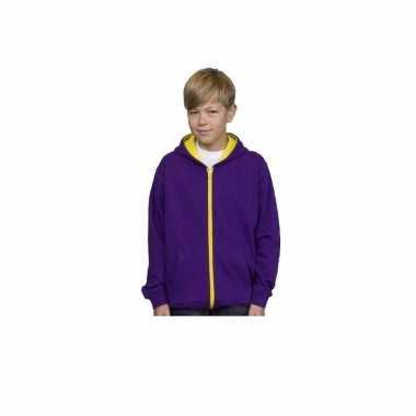 Jongens trui paars geel