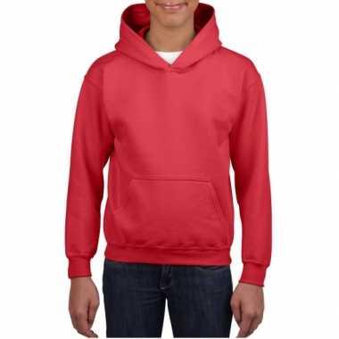 Rode capuchon trui voor jongens