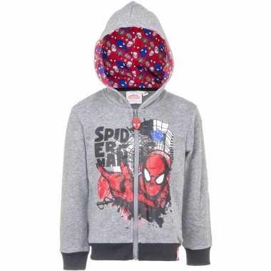 Spiderman trui met rits grijs