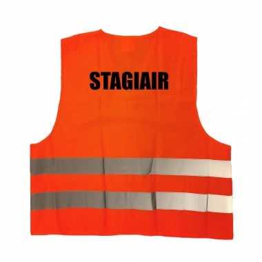Stagiair truije / hesje oranje reflecterende strepen volwassenen
