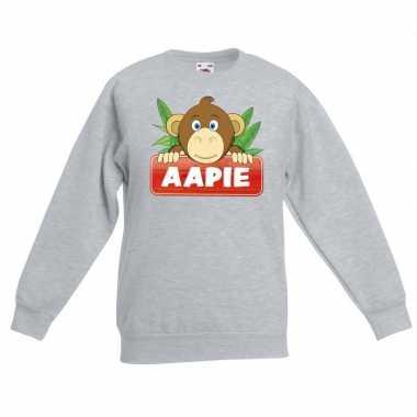 Trui grijs kinderen aapie aapje