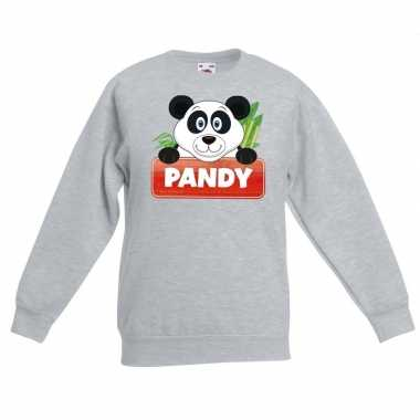 Trui grijs kinderen pandy panda