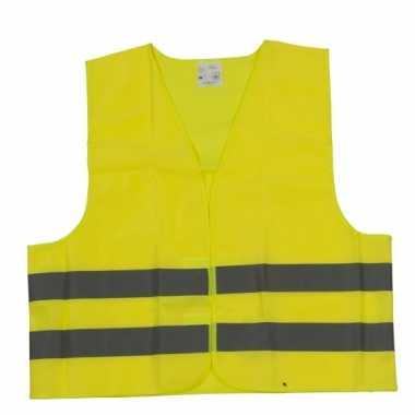 Veiligheidstrui geel volwassenen