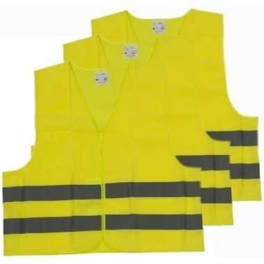 X veiligheidstruien/hesjes geel volwassenen