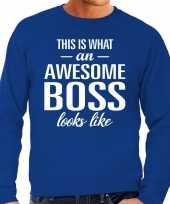 Awesome boss baas cadeau trui blauw heren