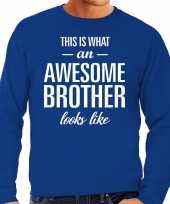 Awesome brother broer cadeau trui blauw heren