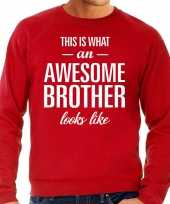 Awesome brother broer cadeau trui rood heren