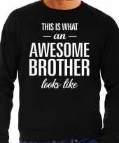 Awesome brother broer cadeau trui zwart heren