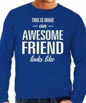 Awesome friend vriend cadeau trui blauw heren