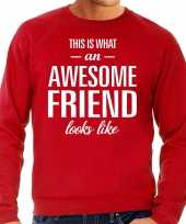 Awesome friend vriend cadeau trui rood heren