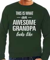 Awesome grandpa opa cadeau trui groen heren