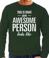 Awesome person persoon cadeau trui groen heren