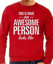 Awesome person persoon cadeau trui rood heren