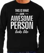 Awesome person persoon cadeau trui zwart heren