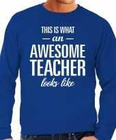 Awesome teacher leraar cadeau trui blauw heren
