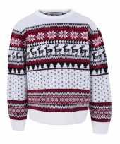 Kersttrui kinderen nordic wit
